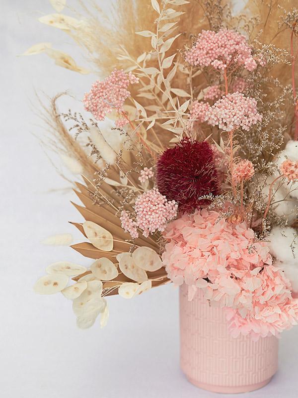 Pale pink everlasting flowers